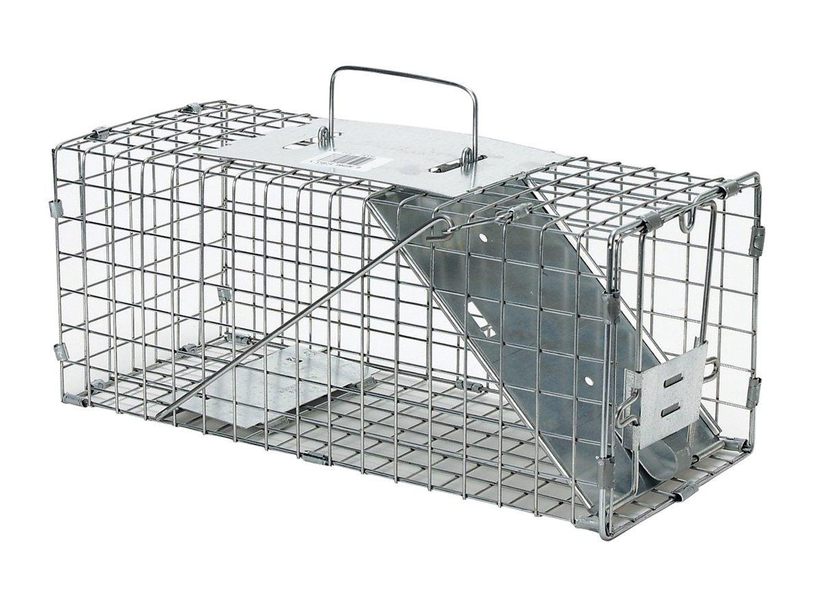 small professional style one door animal trap