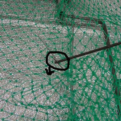 Sparrow Quail Humane Live Trap Mesh 49X30cm
