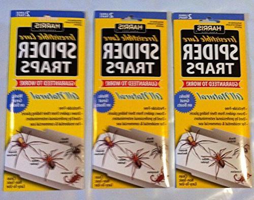 spider trap value