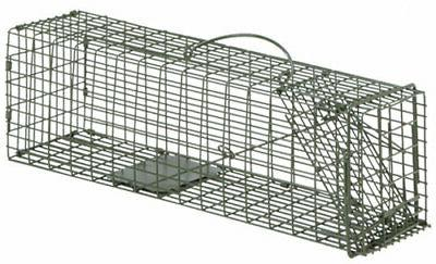 sure fire cage live trap 16 x5