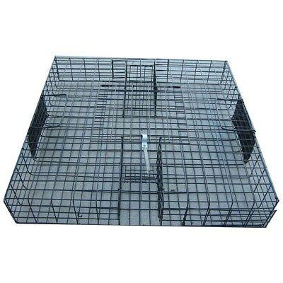 the squirrelinator live squirrel trap only pack