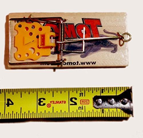 Tomcat New 5