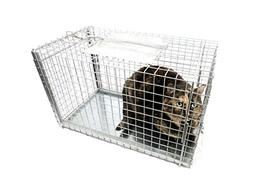 Tomahawk Live Trap Model 306TX SET OVER CAPTURE CAGE FOR CAT