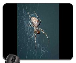 Mouse Pads - Spider Insect Macro Animal Spider Web