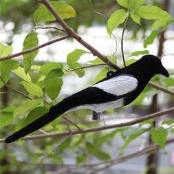 New Flocked Magpie Bird Decoy Full Body <font><b>Trap</b></f