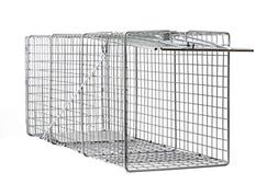 Large One Door Catch Release Heavy Duty Cage Live Animal Tra