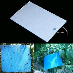 Outdoor Indoor PVC Sticky Insect Killer Whitefly Thrip Fruit