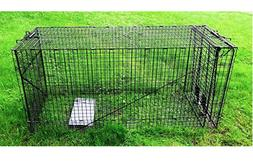 Outdoor Rodent Trap Red Squirrel Large Ground Best Wild Anim