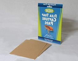 BioCare Replacement Flea Trap Sticky Capture Pads for Use wi