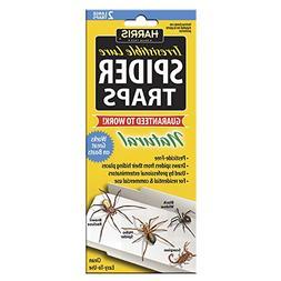 Harris Spider traps STRP glue trap with lure spider glueboar