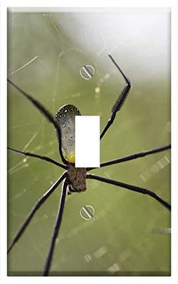 Switch Plate Single Toggle - Spider Insect Arachnid Nature I