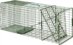 Duke Traps Raccoon Cage Trap