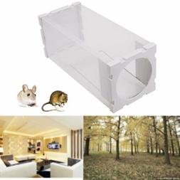 US Rat Live Trap Box Mice Mouse Mole Small Rodent Cage Anima